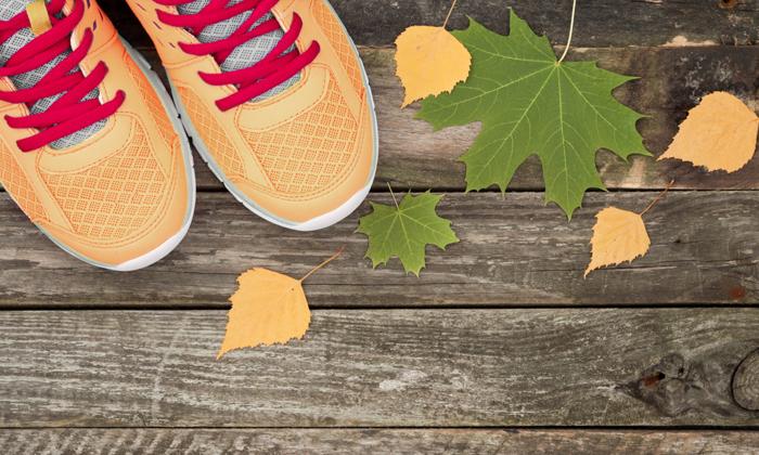 Geänderte Öffnungszeiten: Feiertage Herbst